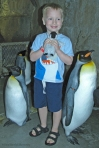 Antarctica_Daniel at Penguin Encounter