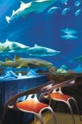 SeaWorld Orlando Sharks Restaurant