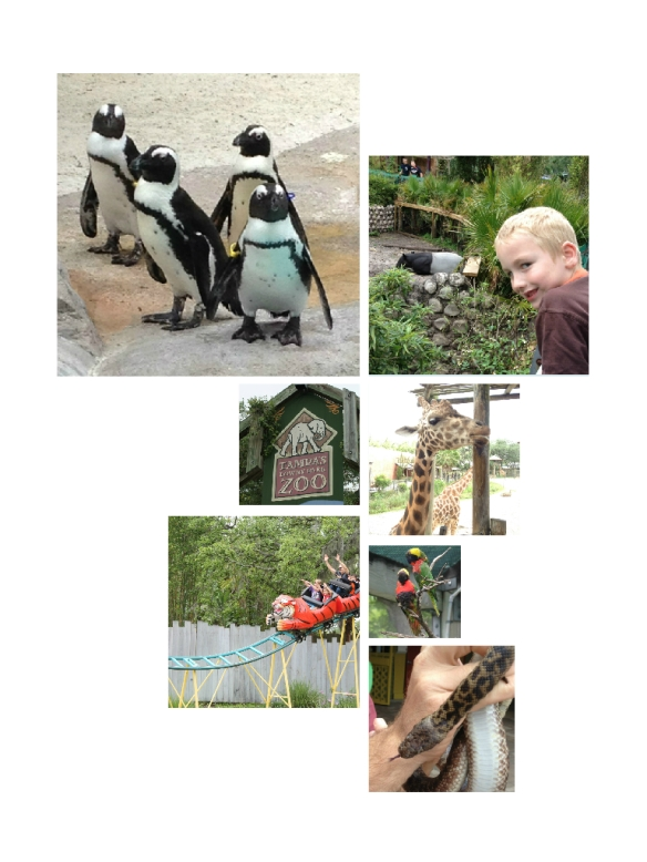 LowryParkZooCollage