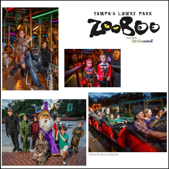 zoo boo collage