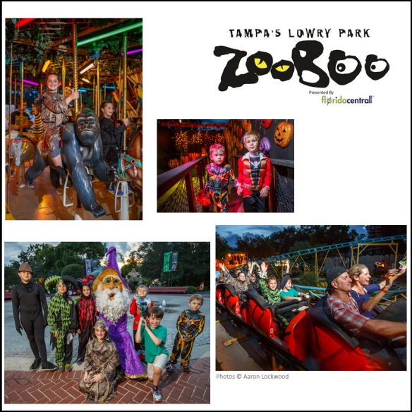 zoo boo collage