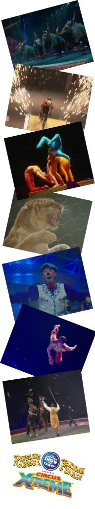 extreme circus photos
