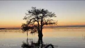 What a sunset, on Lake Tohoopekaliga